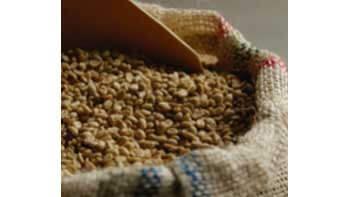 Producción de café de Colombia cae 12% en marzo y 4,4% en año cafetero